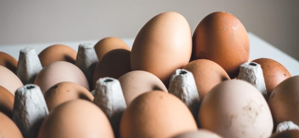 GIS bije na alarm! Konkretne jajka mogą być skażone, pod żadnym pozorem ich nie jedz i nie używaj do wypieków