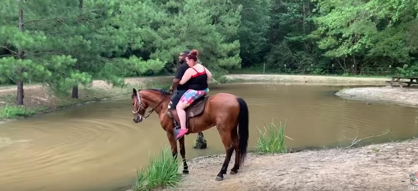 Kamera nagrała konia, który wiózł turystów z nadwagą. W końcu się wkurzył, przez jego reakcje można się popłakać