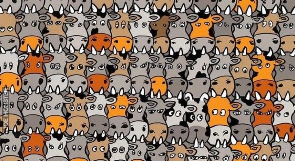 Niemal niemożliwe do rozwiązania. Wśród krów chowa się pies, widzisz go?