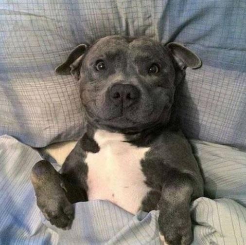 """Najważniejsza reguła dobrego snu. Nie zapomnij powiedzieć """"dobranoc"""" wszystkim, których kochasz"""