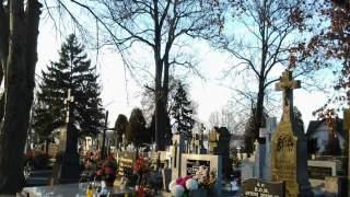 Syn pani Barbary zginął w tragicznych okolicznościach. Teraz kazali jej rozebrać jego grób, powód nie mieści się w głowie