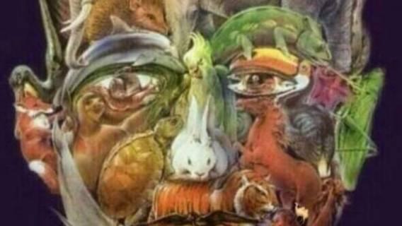Na obrazku jest pełno zwierząt, ale czy uda Ci się znaleźć wielbłąda? Zadanie jest trudniejsze, niż się wydaje