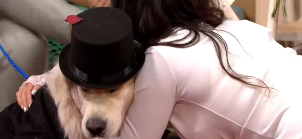 Pies ślub