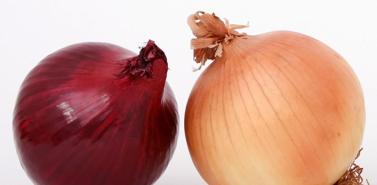 93% Polaków nie wie, że robi błąd. Konkretne kolory cebuli mają swoje szczególne zastosowanie
