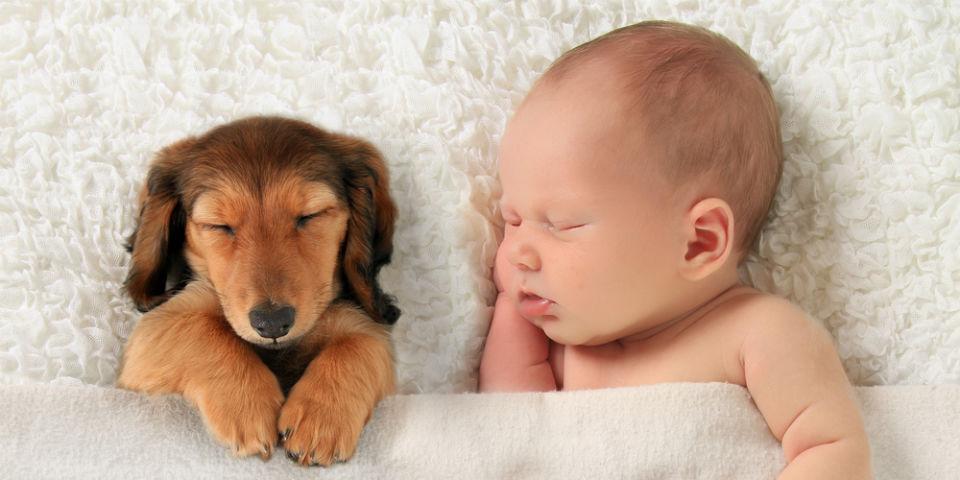 Maleństwa słodko śpią. Cudowny widok