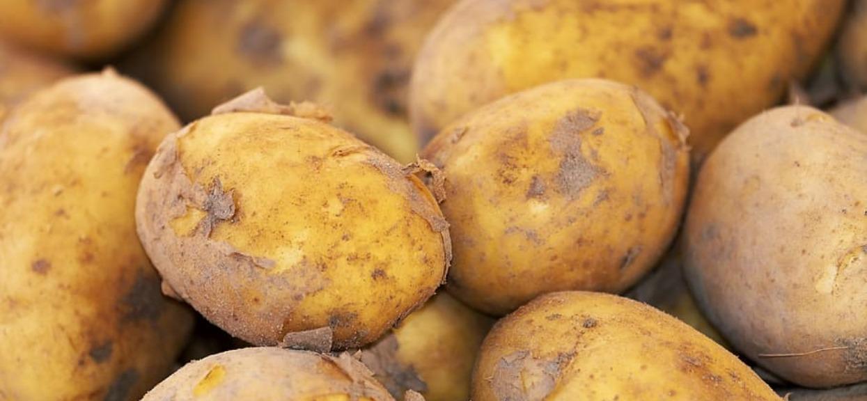 Przez rok jadł tylko ziemniaki. Efekt był nie do przewidzenia, jego obecne zdjęcia zwalają z nóg