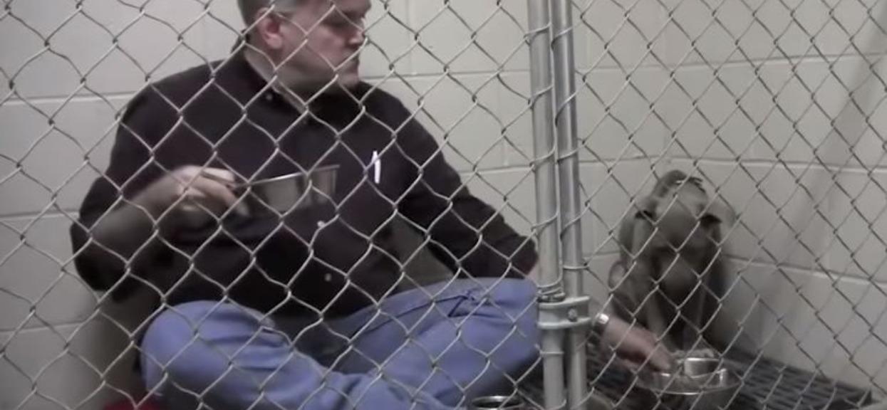 Zamknął się w klatce z pitbullem. Gdy sięgnął do miski, wydarzyła się niezwykła rzecz, wszystko się nagrało