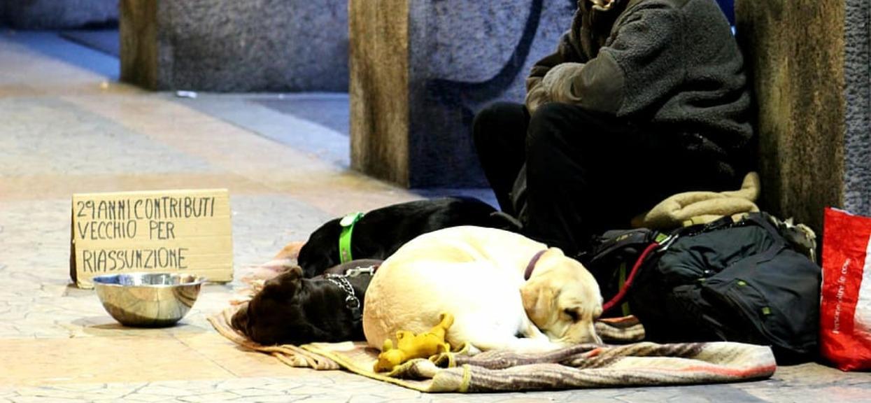Niewiarygodne, co bezdomny zrobił z psem podczas epidemii koronawirusa. Łzy same lecą z oczu