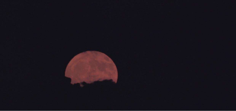 """Dziś w nocy warto wyjść na balkon. Na niebie będzie widoczne rzadkie zjawisko, """"Superksiężyc"""" zapiera dech w piersiach"""