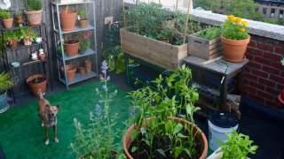 Nawet na małym balkonie w bloku też możesz zrobić ogródek jak z bajki. 4 proste i tanie sposoby