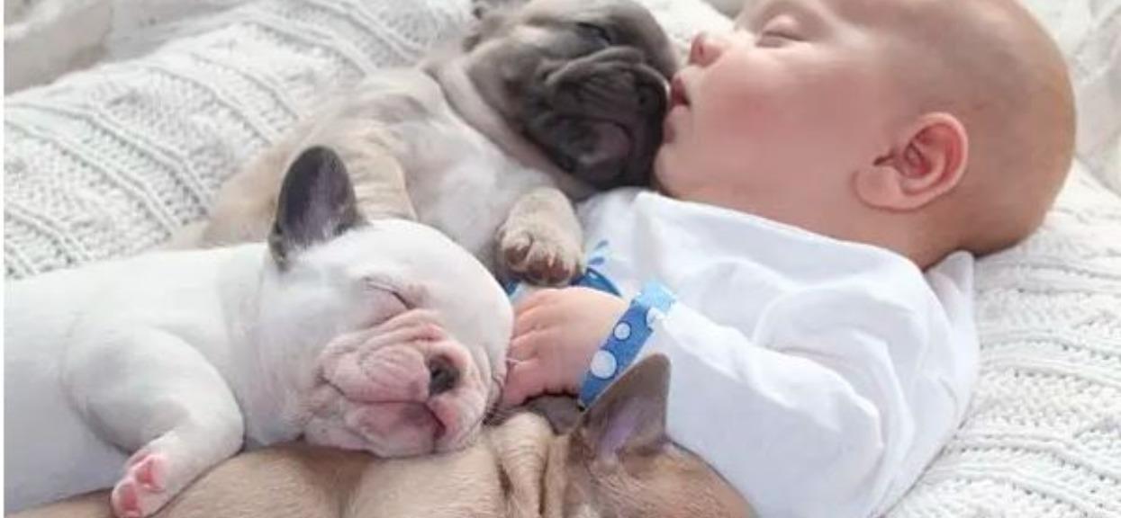 Dobranoc wszystkim. Maluchy już śpią, ciekawe o czym śnią?