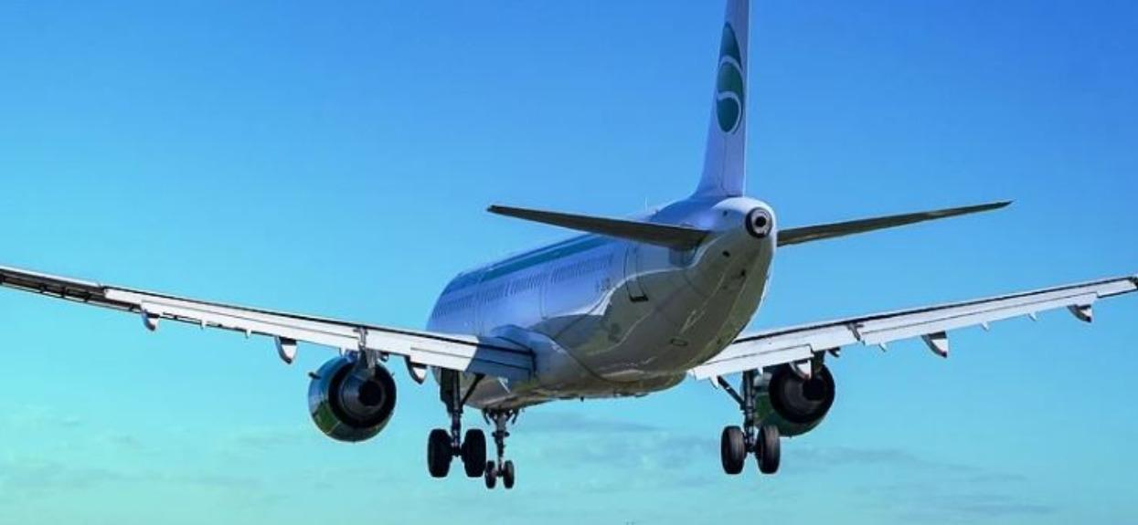 Leciała samolotem do domu, nagle poczuła się fatalnie. Wystarczyło, że nieznajoma zrobiła jedną rzecz