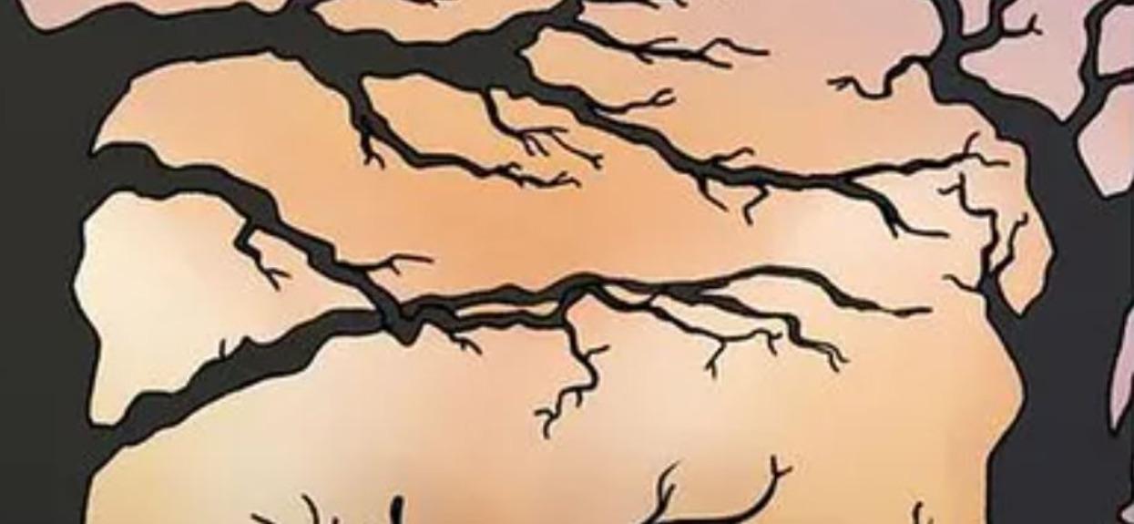 Co zobaczyłeś na obrazku, drzewa czy tygrysa? Odpowiedź zdradza prawdę o osobowości, skuteczność zadziwia psychologów