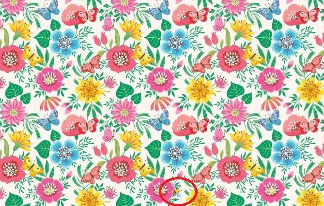 Wśród wiosennych kwiatów buszuje osa. Tylko nieliczni znajdą ją w 15 sekund, reszta się poddaje