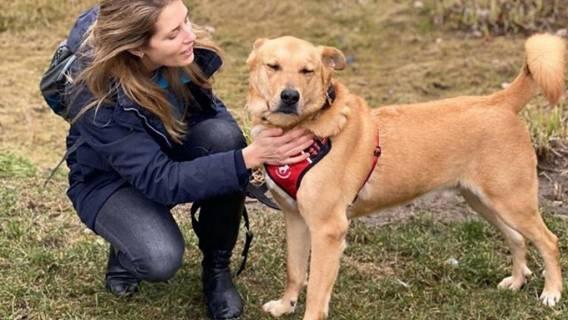 Aleksandra Prykowska oraz pies
