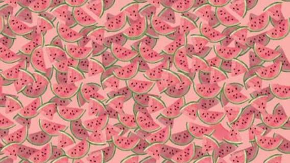 Zagadka arbuzy