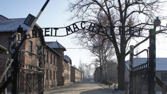Auschwitz, porażające odkrycie