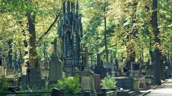 na cmentarzu zobaczył dziwny napis