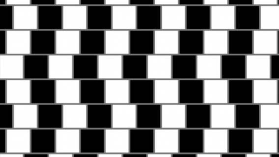 Iluzja optyczna potrafi nas zwieść.