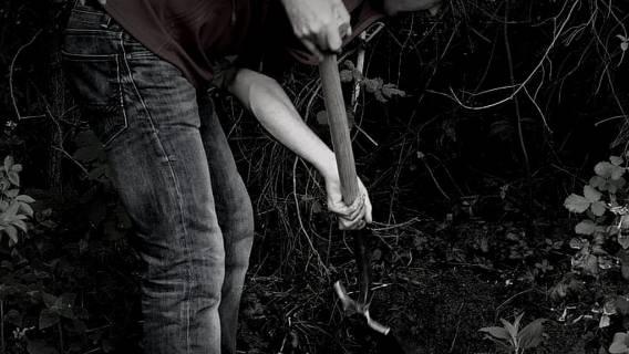 Mama zakopana przez syna