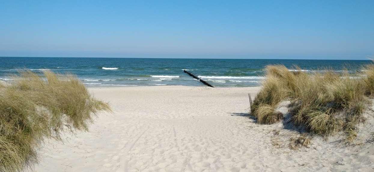 Bardzo zła wiadomość dla osób spędzających urlop nad Bałtykiem. Zamykają kolejne popularne kąpieliska