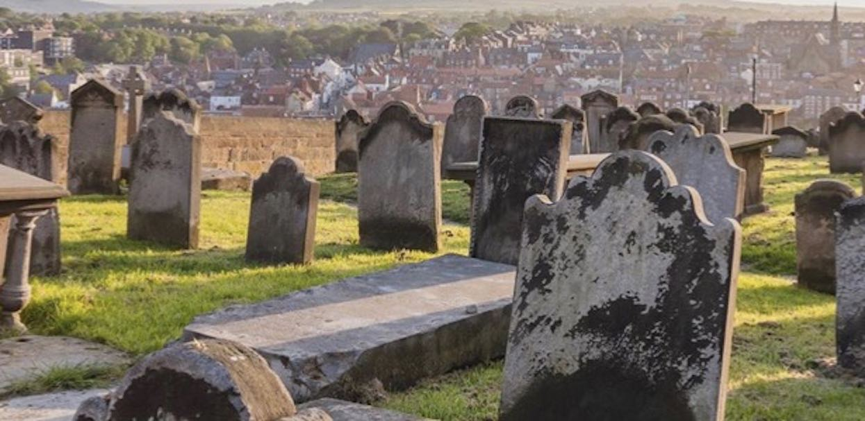 Pies ukrył się pośród cmentarnych nagrobków. Tylko 1 na 10 osób potrafi go znaleźć
