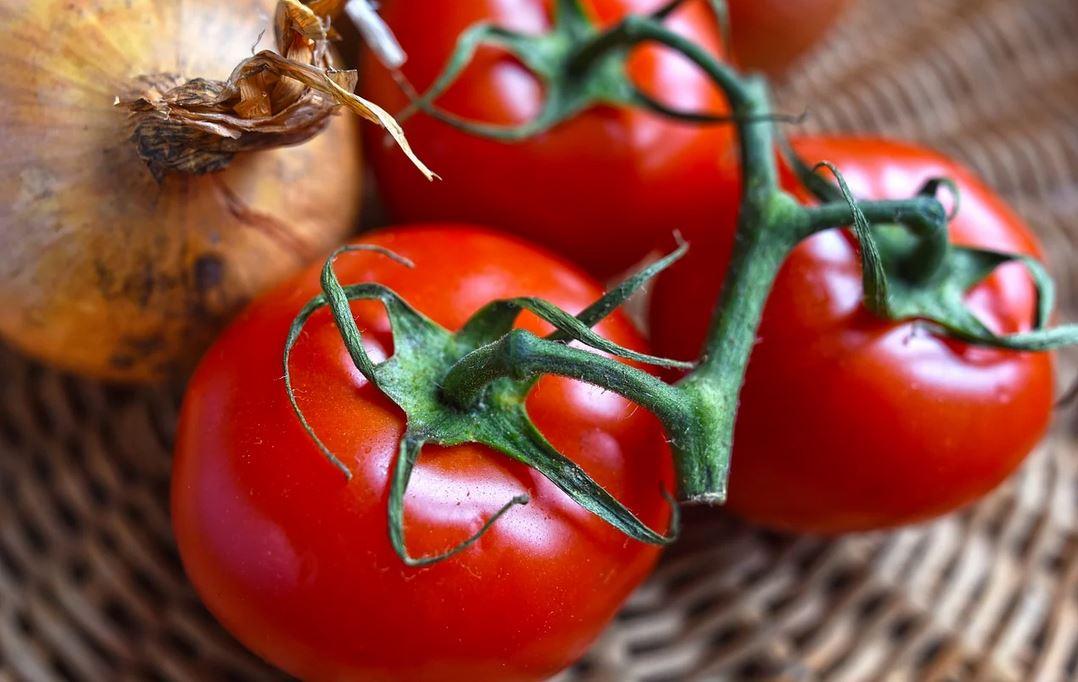 Wiele osób popełnia jeden błąd. Przez niego, pomidory nie nadają się już do jedzenia