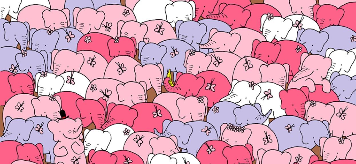 Znajdziesz serce ukryte wśród słoni? Większość poddaje się po minucie, tylko najbardziej inteligentni dają radę