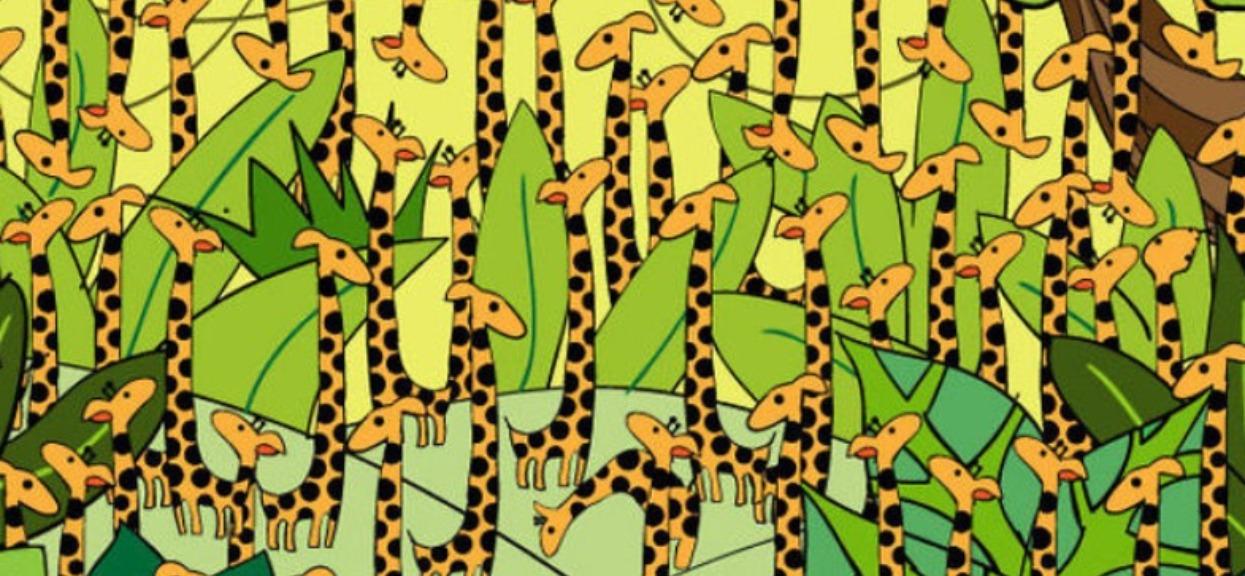 Wśród żyraf ukrywa się niebezpieczny wąż. Tylko nieliczni są w stanie znaleźć go w mniej niż 20 sekund