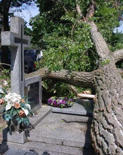 cmentarz zniszczenia nawałnica