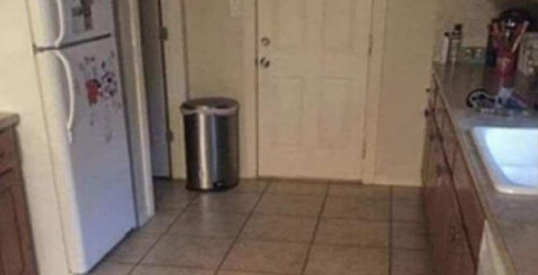 Na zdjęciu chowa się pies. 90% osób od razu się poddaje