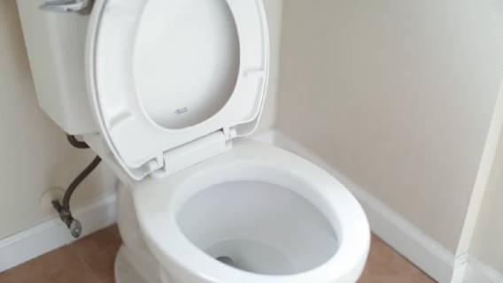 Czosnek może okazać się sprzymierzeńcem w walce o czystą toaletę