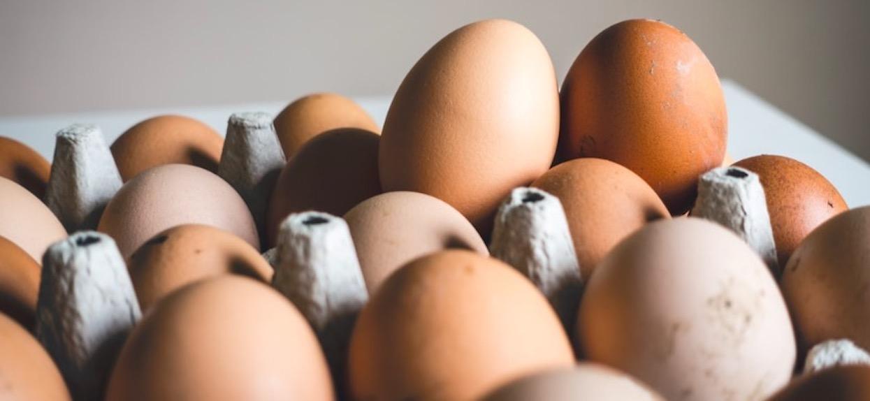 Groźna bakteria w popularnych jajkach, GIS masowo wycofuje produkt. Pod żadnym pozorem nie wolno ich jeść