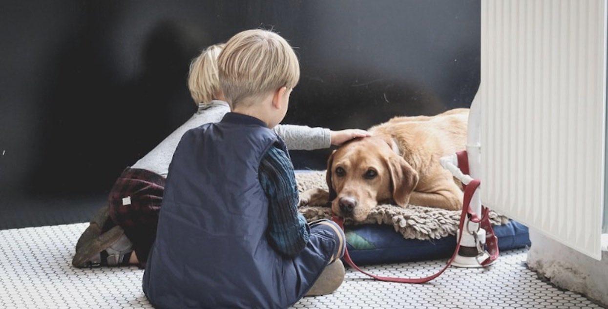 Traktuję psa jak członka rodziny, a Ty?
