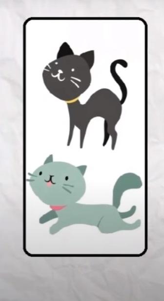 Koty nr 1