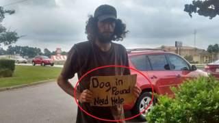 Przejeżdżała obok bezdomnego mężczyzny. Gdy przeczytała napis na kartonie, od razu wcisnęła hamulec