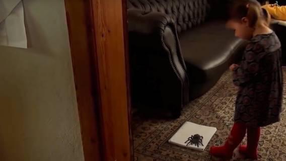 Mała dziewczynka próbowała zabić pająka