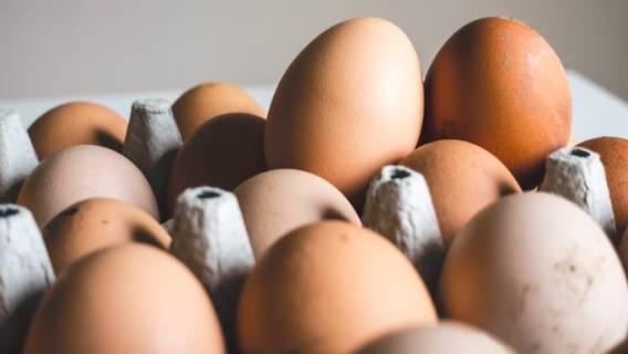 GIS wydał pilne ostrzeżenie, popularne jajka skażone bakterią
