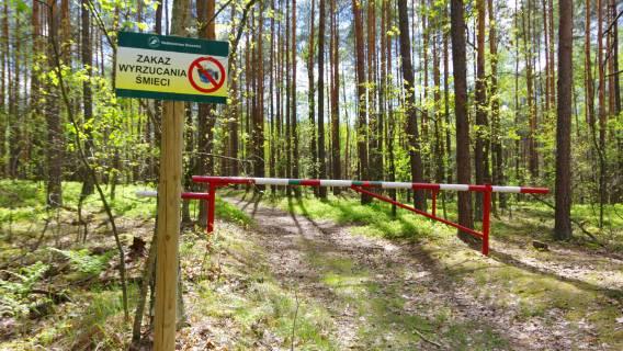 Kary za śmiecenie w lasach - zwiększenie