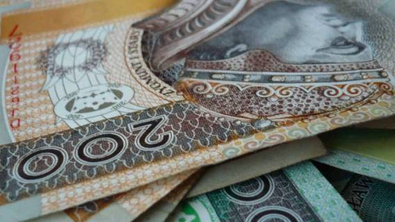 pieniądze Polacy