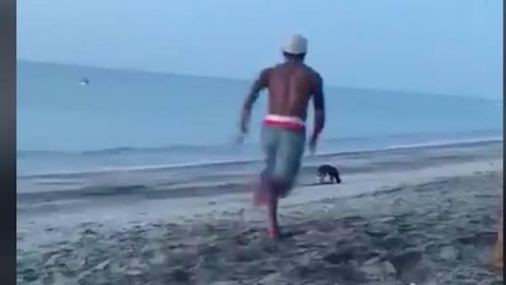 Pies spacerował po plaży, kiedy mężczyzna zdecydował się go kopnąć
