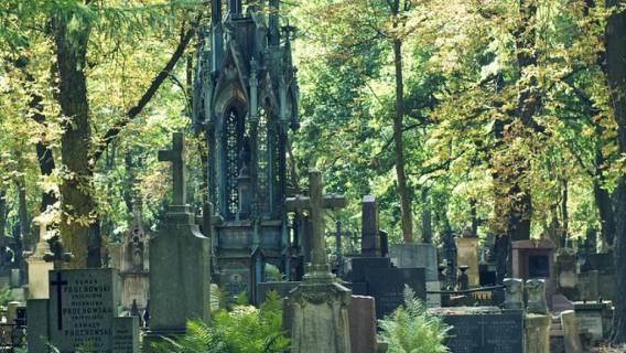 Nastolatka na cmentarzu