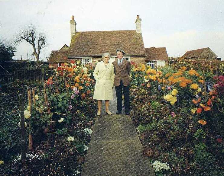 Starsze małżeństwo zdjęcia
