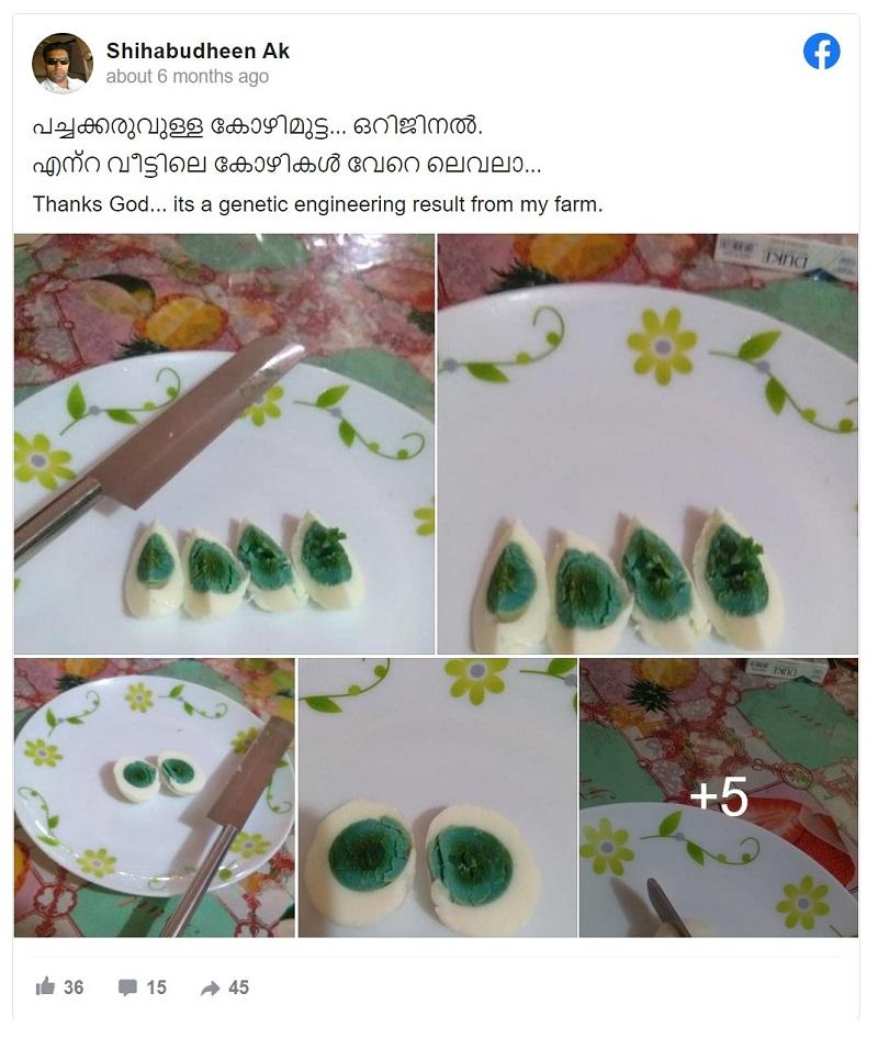 zielone żółtka jajka