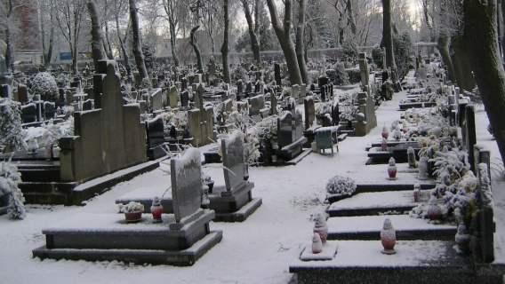 Mateusz Morawiecki pieniądze groby