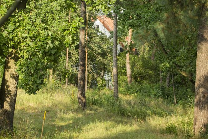 Dom Łukasza Szumowskiego