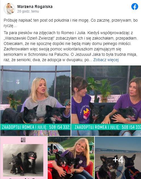Marzena Rogalska zaapelowała do fanów
